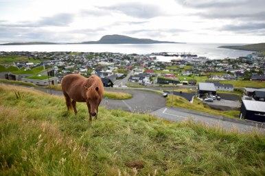 Vue sur Torshavn