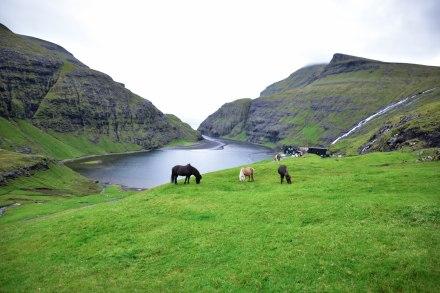 Faroe-63