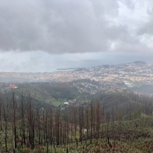 Vue plongeante sur Funchal